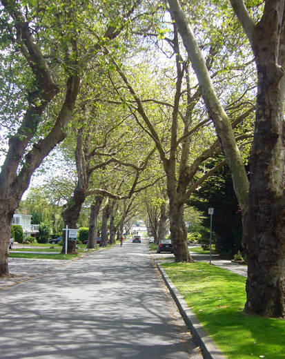 gyro park