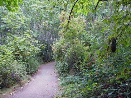 mystic vail trail