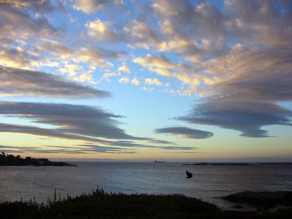 ビクトリア 朝の空