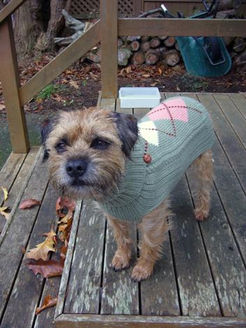Gus野セーター