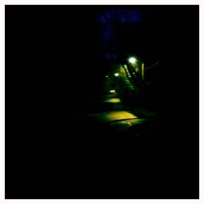 街灯の明かり