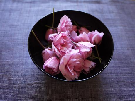 桜の塩漬け