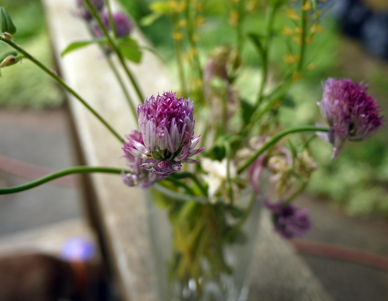 花の終わり