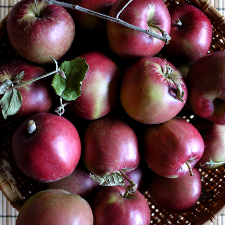 りんごとシナモンのスコーン