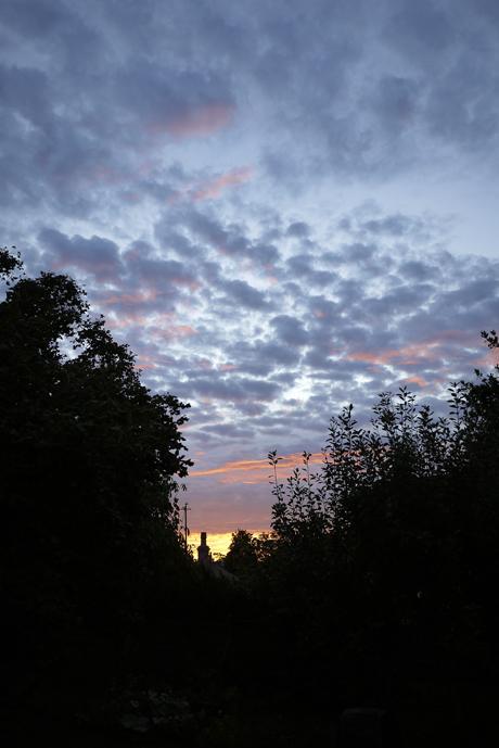 金曜の朝の色