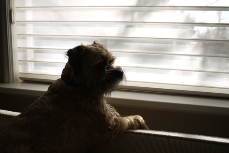 Gusはヒーターの側にあるボロカウチにもたれかかり。