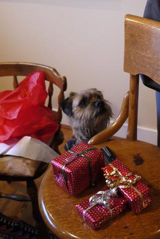 2011クリスマス