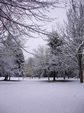 雪の日のUvic