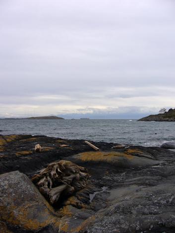 McNeil Bay 2012