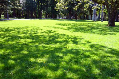 UVic 2012 Spring