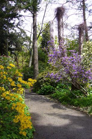 2012年UVic の庭園