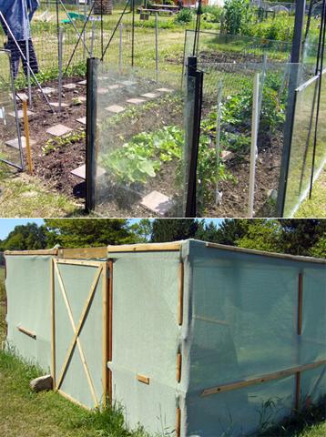 Uvic Community Garden