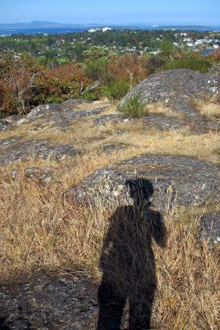 丘の上のGus 8月